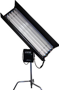 Freesun lampa 4FT4Bank fixture